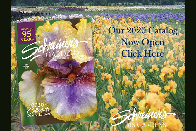 2020 Catalog Online Now Open