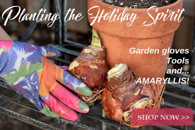 Garden Gear Gifts