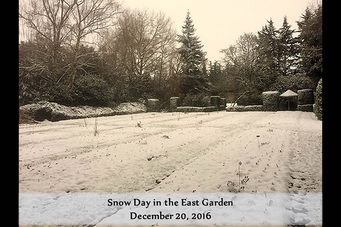 Snow Day East Garden