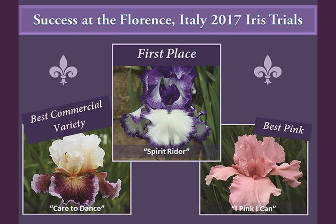 Florence Iris Trials 2017
