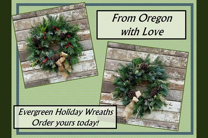 Holiday Wreaths 2017