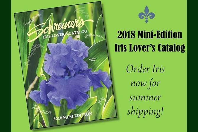 2018 Iris Lover's Catalog