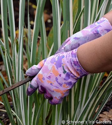 Funtasia Garden Glove   Garden Tools