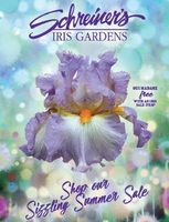 Image *** 2019 Sizzling Summer Sale ***