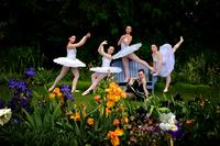 Image 2019 Bloom Season Photo Contest Winning Entries