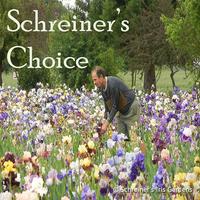 Image Schreiner's Choice