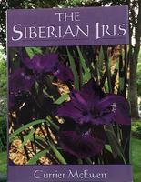 Image The Siberian Iris