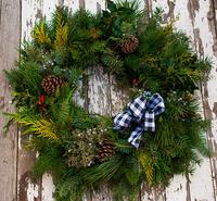 Image Holiday Cheer Evergreen Wreath Black Check Ribbon