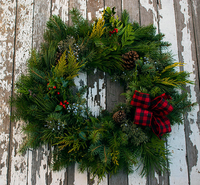 Image Holiday Cheer Evergreen Wreath Red Check Ribbon