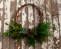 Image NW Grapevine and Evergreen Wreath No Bow