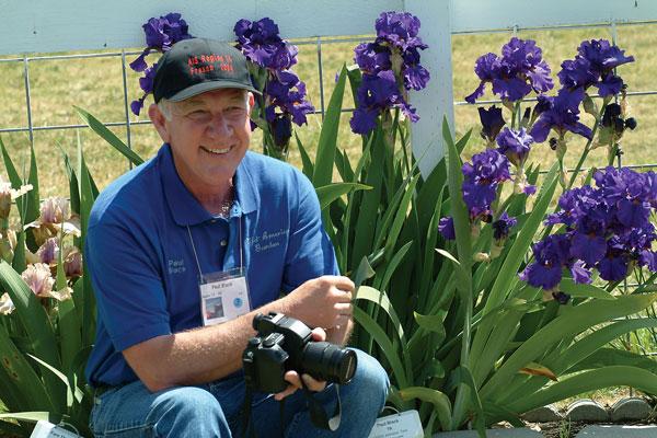 Iris Hybridizer | Paul Black